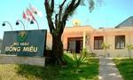 Công ty vàng Bồng Miêu xin miễn thuế chậm nộp do thiên tai