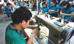Tham gia 15 FTA: Càng hội nhập, càng lộ điểm yếu
