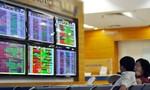 PPI lên kế hoạch phát hành thêm 20 triệu cổ phiếu giá từ 10.000 đồng