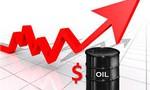 PV Drilling chốt quyền nhận cổ tức bằng tiền tỷ lệ 15% và bằng cổ phiếu tỷ lệ 15%