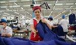 Hoạt động sản xuất sôi động trở lại