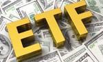Khối lượng cổ phiếu giao dịch qua Quỹ EFT làm lu mờ GDP Mỹ