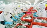 Hoa Kỳ công bố POR 9 có lợi cho tôm Việt Nam: FMC sẽ được áp mức thuế suất 0%