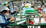 TPP mở ra định hướng phát triển mới cho doanh nghiệp Việt Nam