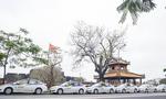 """Thành Công Taxi tưng bừng khuyến mại """"Chào hè 2015"""" tại Huế"""