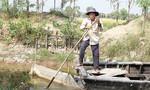 Hàng ngàn nông dân Tiền Giang bỏ tết lo cứu lúa
