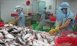 Trì hoãn thông quan lô hàng cá tra vào Hoa Kỳ do sử dụng mã số cũ
