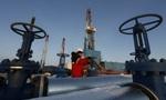 Giá dầu tại Mỹ lên cao nhất trong nửa năm