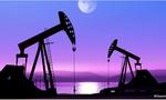Goldman Sachs: Giá dầu sẽ xuống dưới 20 USD/thùng