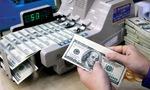 Năm 2016, gửi tiền VNĐ hay USD?