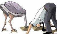 """Nợ xấu và hành động """"vùi đầu xuống cát"""" của đà điểu"""