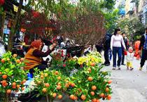Rộn ràng chợ Tết quê giữa lòng TP.HCM