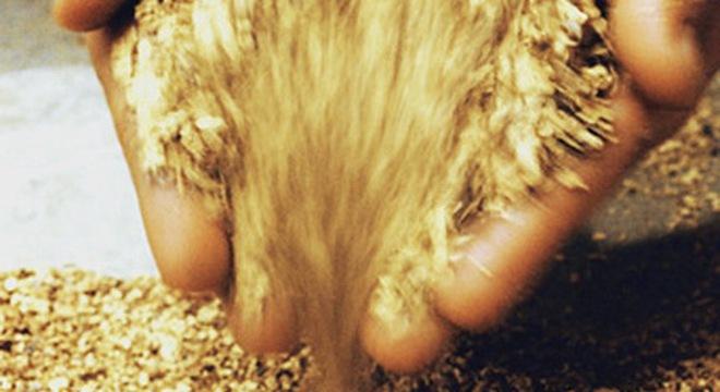 Bình Thuận phát hiện kho vàng 4.000 tấn?