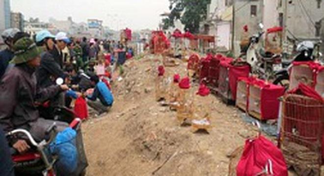Chợ chim cảnh ở Hà Nội: Coi chừng thành… ổ dịch cúm gia cầm