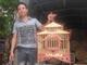 Sản xuất lồng chim đổi ngoại tệ