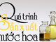 Hương gỗ, vỏ quế, tinh dầu hoa... đã biến hóa vào chai nước hoa như thế nào?
