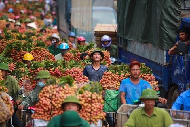 Giờ cao điểm, ngay cả xe máy cũng phải đứng chôn chân hàng tiếng đồng hồ. (Ảnh: Minh Sơn/Vietnam+)