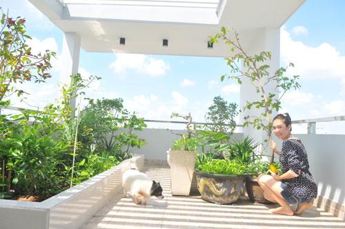 Khoảng không gian nhỏ trên sân thượng được Thanh Thảo dùng để trồng rau sạch.