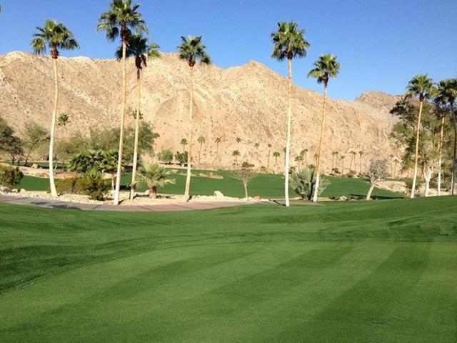 Ellison cũng mua sân golf Porcupine Creek (tại Rancho Mirage, California) từ hai nhà sáng lập Yellowstone Club - Tim và Edra Blixseth - vào năm 2011.