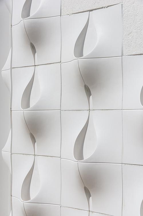 Cây được trồng theo hình thức thủy sinh để đảm bảo vệ sinh cho tường