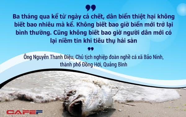 Mong ước về ngư trường xưa, để được tiếp tục bám biển sinh kế vẫn là điều trăn trở của ngư dân miền Trung. Khoản hỗ trợ 500 triệu USD dường như vẫn chưa thể thoả đáng nếu như biển không sạch trở lại, để ngư dân tiếp tục được vươn khơi.