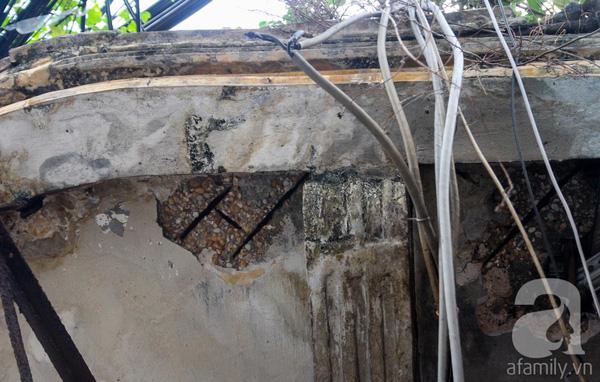 Rất nhiều mảng tường trên trần nhà bị nứt vỡ, lòi cả sắt ra ngoài và bị rễ cây ăn sâu vào bên trong.