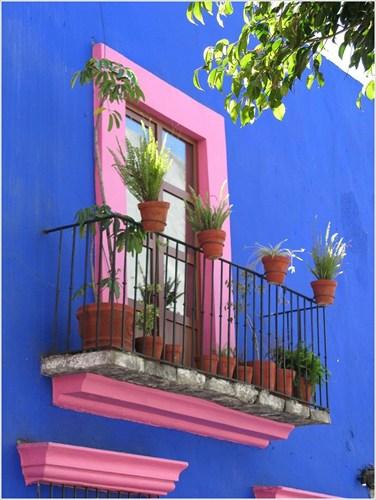 Ngoài việc trang trí bằng hoa, bạn có thể chọn cách sơn lại bức tường cửa sổ với màu sắc nổi bật, bắt mắt như thế này.