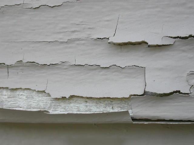 Tường nhà bị bong tróc vì không được xử lý trước khi sơn.