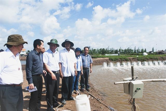 Cán bộ thủy sản tham quan mô hình nuôi tôm sử dụng nước từ ao nuôi cá chẽm của ông Hứa Thành Hưng