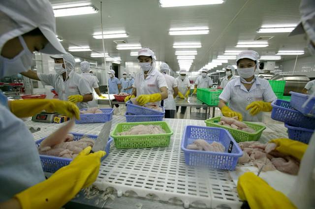 Dù thương mại toàn cầu có xu hướng giảm nhưng xuất khẩu thủy sản của Việt Nam vẫn tăng - Ảnh: Châu Anh