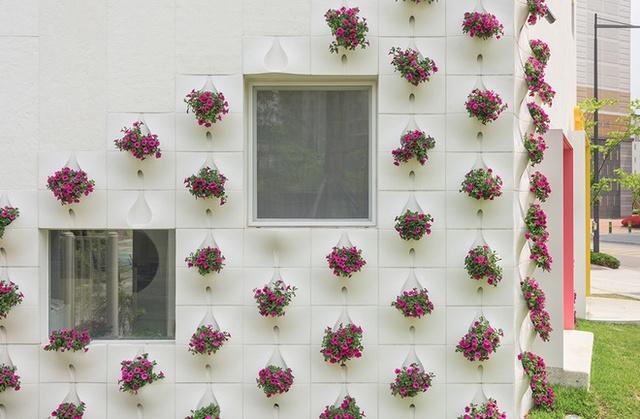 Ngôi nhà của bạn sinh động hơn nhiều với vẻ ngoài nhiều hoa lá