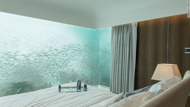 Tấm kính từ sàn nhà tới trần nhà chỉ dày có 9,5 cm khiến bạn cảm thấy như không có khoảng cách giữa mình và đại dương bên ngoài. Tuy nhiên, kính không chịu được áp lực dưới nước, thay vào đó chất liệu acrylic đã được sử dụng vì tính chịu bền và độ trong suốt như thủy tinh.