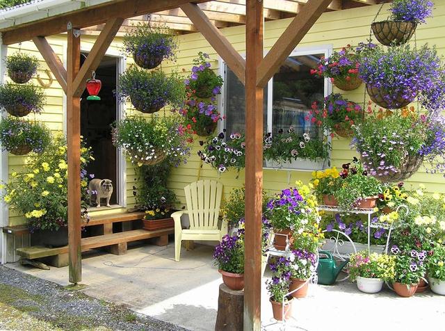 Những giỏ hoa đầy màu sắc nơi hiên nhà sẽ giúp bạn tìm được cảm hứng mới mẻ sau những thời khắc căng thẳng, mỏi mệt của một ngày.