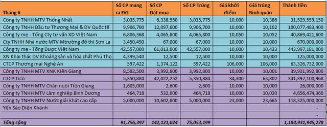 Thống kê kết quả đấu giá cổ phần trên 2 sàn HSX/HNX.