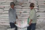 Thị trường đường liệu có thiếu nguồn cung?