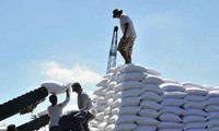 Cho nhập khẩu bổ sung 100.000 tấn đường trong hạn ngạch