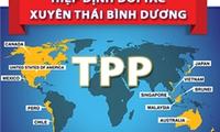 Trình Quốc hội phê chuẩn Hiệp định TPP vào Kỳ họp thứ nhất, Quốc hội khóa XIV