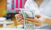 Trần lãi suất huy động USD 0% - có nên thay đổi chính sách?