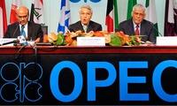 Đây là lý do không nên trông chờ vào cuộc họp tháng 6 của OPEC