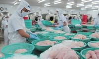 45 cơ sở chế biến được xuất khẩu cá tra, basa sang Mỹ