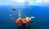 Chỉ trong vòng một tháng, rất nhiều cổ phiếu dầu khí đã tăng hàng chục phần trăm