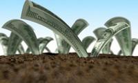 Hà Nội tiếp tục siết mạnh doanh nghiệp chây ỳ nợ tiền sử dụng đất
